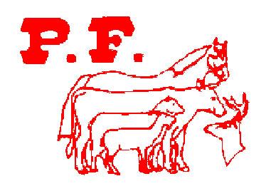Positive-Feed-logo
